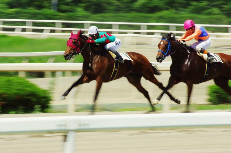 差を広げる競走馬