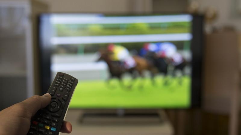 TVで競馬